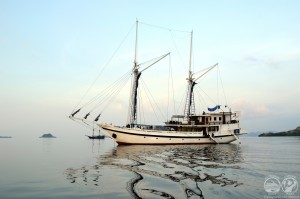 Komodo Dancer - yacht